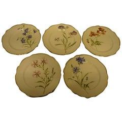 11 Rörstrand Art Nouveau Plates, Hand-Painted, Different Flowers