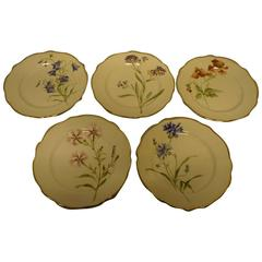 11 Rörstrand Art Nouveau Plates, Hand-Painted, Different Flowers