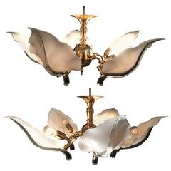 Fantastic Pair of Murano Chandelier by Franco Luce, circa 1970