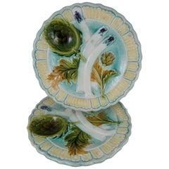 19th Century French Salins-les-Bains Majolica Asparagus & Artichoke Plate