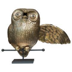 Mounted Sergio Bustamante Owl