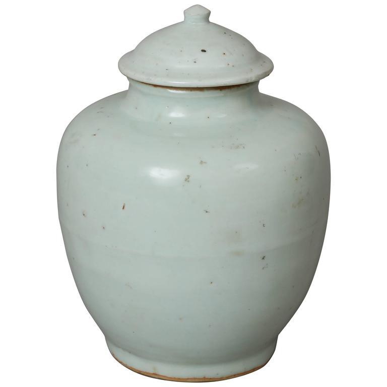 Ming Dynasty Porcelain Vase For Sale