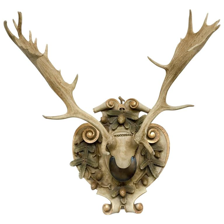 Habsburg Fallow Deer Trophy from Eckartsau Castle with French Gorget