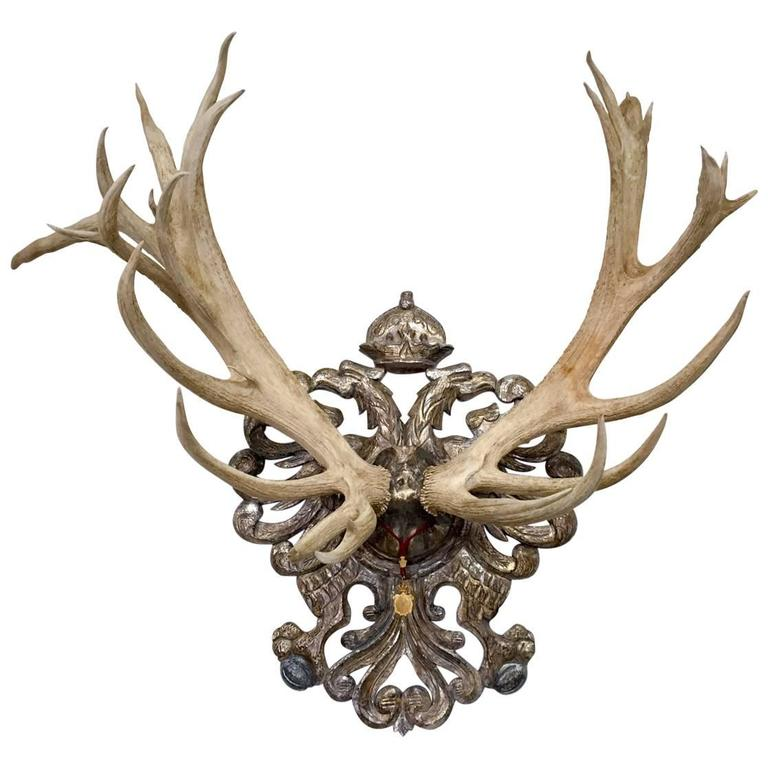 19th Century Habsburg Red Stag Trophy From Franz Joseph's