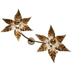 Willy Daro Style Brass Flowers Ceiling or Wall Light by Massive Lighting