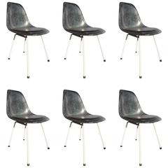 Set of Six Blue Charles Eames Chair Hermann Miller Edition