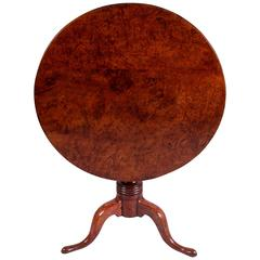 18th Century Mid Georgian Solid Burr Yew Tilt-Top Table