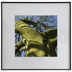 'L'Eveil du Dragon' 1/3 by Antoine Vignault, 2016