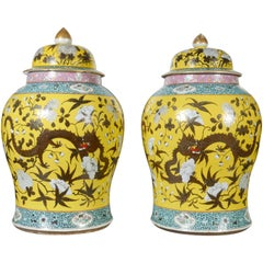 Large Pair of Chinese Famille Jaune Covered Jars with Painted Dragons