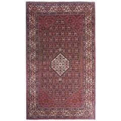 New Persian Rugs, Carpet from Bijar