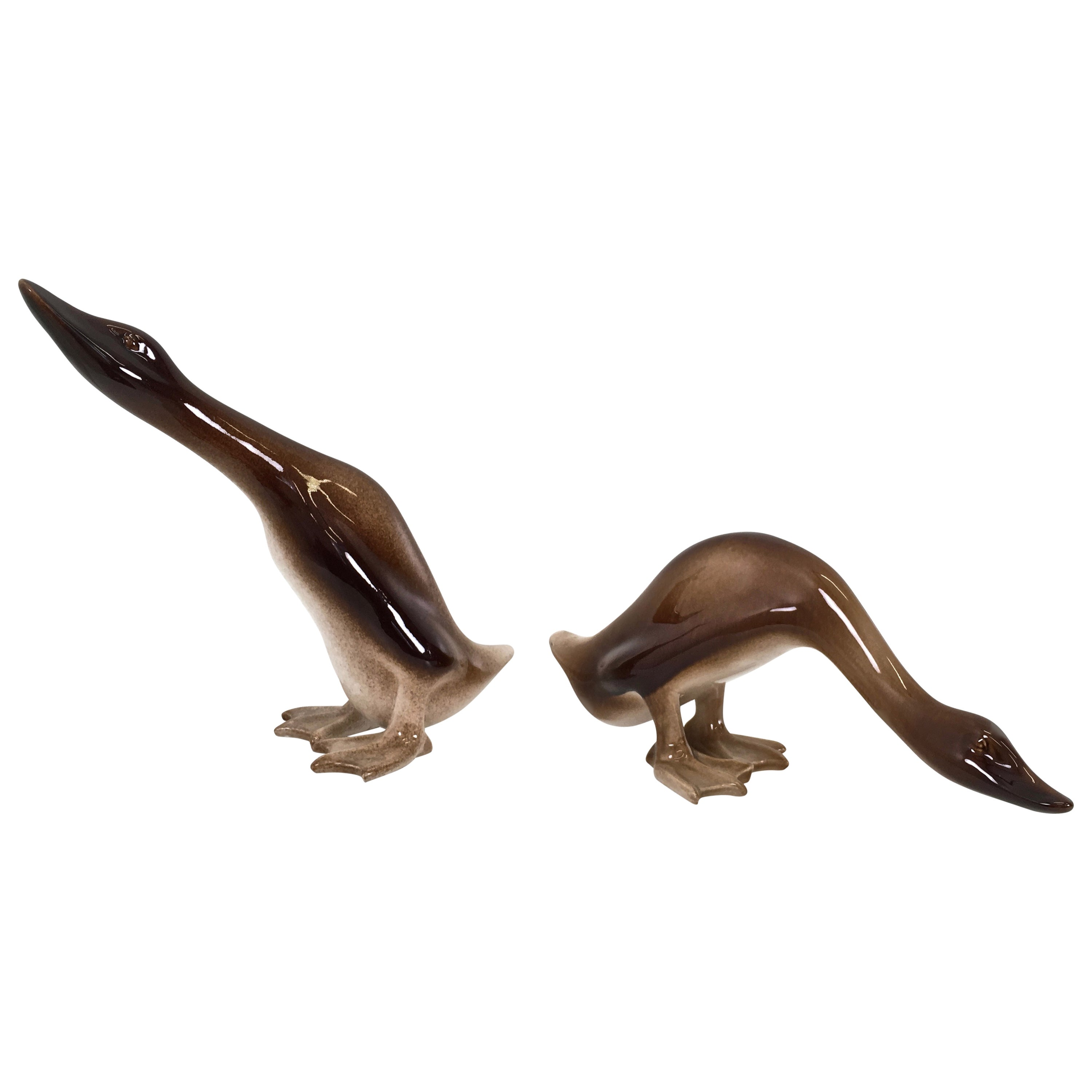 Pair of Ducks Statues by Ugo Zaccagnini, Italy, 1950s