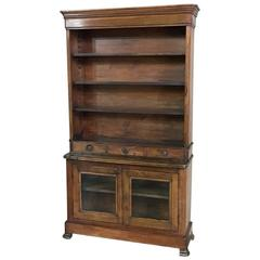 19th Century Rare French Louis Philippe Period Pharmacy Walnut Original Bookcase