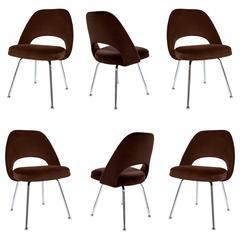 Saarinen Executive Armless Chairs in Espresso Velvet, Set of Six