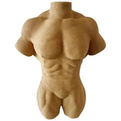 Ripped Male Torso Sculpture/Mannequin