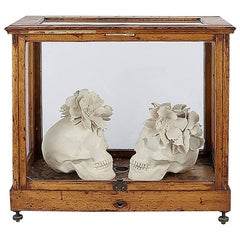 Steven Geddes Skull with Dog Roses