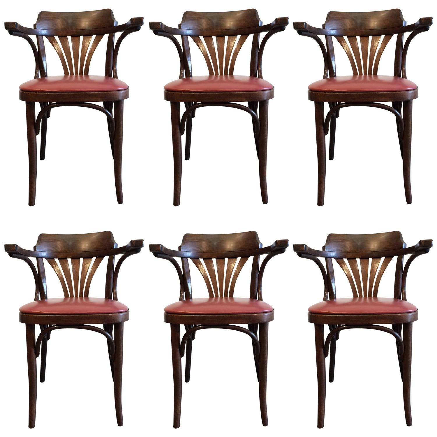 Six Bentwood Chairs by Drevounia Czech Republic 1950s For Sale