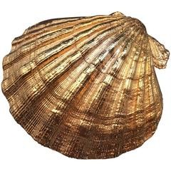 Creel and Gow Gold-Plated Pecten Shell, Symbol of Pilgrims & of Emblem of James