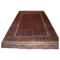 Antique Main Carpet by the Baluch of Western Afghanistan, Shrub Design