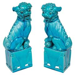 Great Pair of Chinese Tuquoise Ceramic Foo Dogs