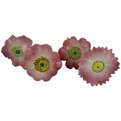 Delphin Massier French Majolica Pink Floral Menu or Place Card Holders, S/4