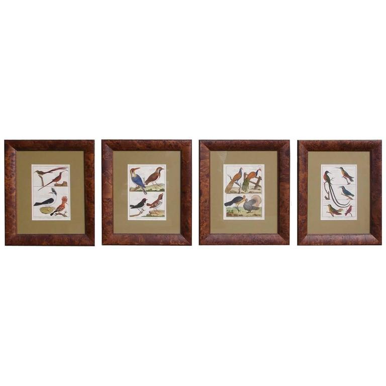 Set of Four French Hand Colored Framed Engravings Bernard Direxit, Circa 1790