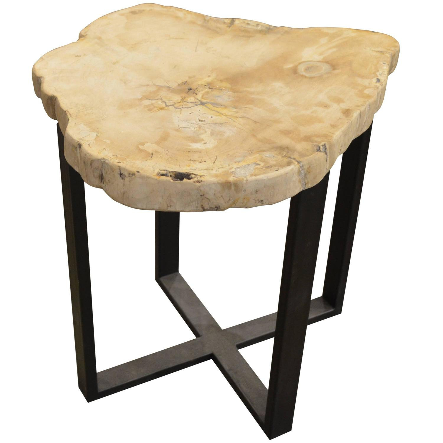 Petrified wood side table for sale at stdibs
