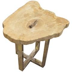 Andrianna Shamaris Petrified Wood Side Table