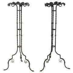 Iron Fern Plant Stands