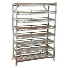 Iron Fruit Drying Rack