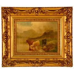 Oil on Canvas, Scottish Cattle