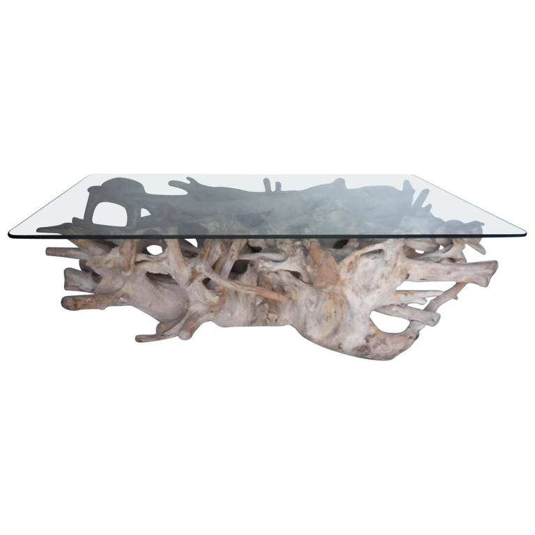 Sculptural Teak Root Coffee Table With Glass Top 1