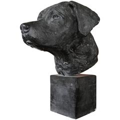 Unique Sculpture / Bust of a Labrador Retriever 20th Century Beautiful Quality