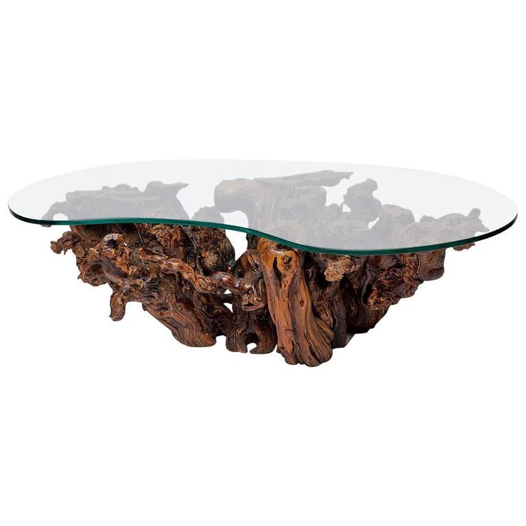 mid century burl wood coffee table at 1stdibs rh 1stdibs com burl wood coffee table glass top burl wood coffee table for sale