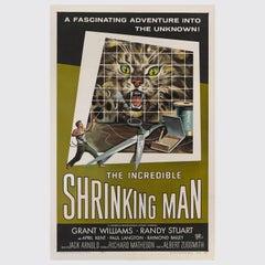 """Incredible Shrinking Man"" Poster"