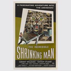 """Incredible Shrinking Man"" Poster"