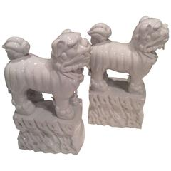 Foo Dogs Pair White Chine De Blanc Italian Hollywood Regency Vintage Ornate