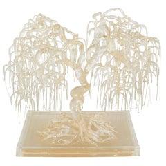 Sculptural Bonsai Tree