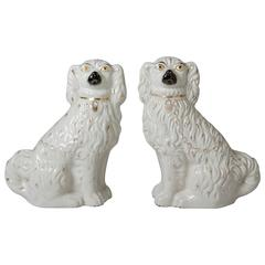 Late 19th Century Staffordshire Dogs, Pair