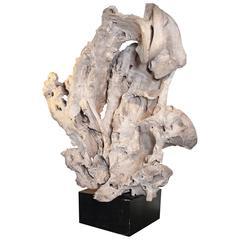 Massive Organic Teak Sculpture