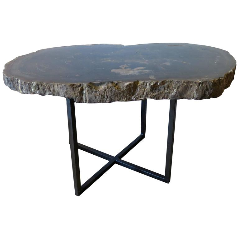 Black and Gray Petrified Wood Coffee or Side Table For Sale