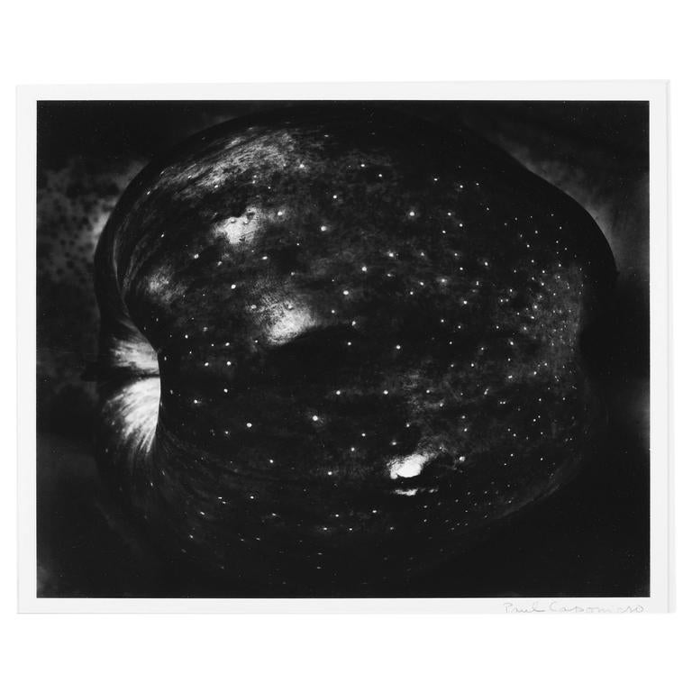 "Paul Caponigro ""Galaxy Apple"" Silver Gelatin Photograph 1"