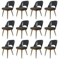 Beautiful Modernist Chairs in the Style of Oswald Haerdtl, Backhausen, Austria