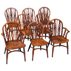 Very Fine and Rare Set of Eight Yew and Elm Windsor Chairs