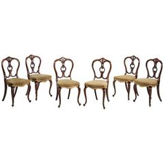 Set of Six Mid-Victorian Balloon Back Chairs