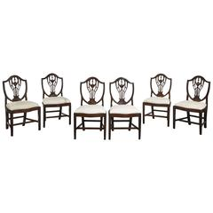 Set of Six George III Period Mahogany Hepplewhite Chairs