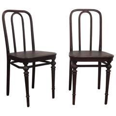 Pair of Chairs 41 by Thonet