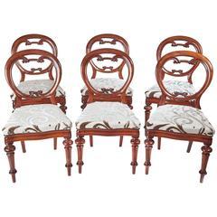 Set of six 19th Century Balloon Back Victorian Mahogany Dining Chairs