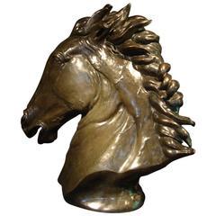 Contemporary Bronze Sculpture of a Life-Size Horse's Head by Abbott Van Dada