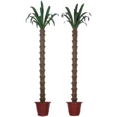 Dramatic Pair of Tole Wall-Mounted Palm Trees