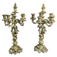 Pair of Antique French Rococo Louis XIV Bronze Candelabra, circa 1850